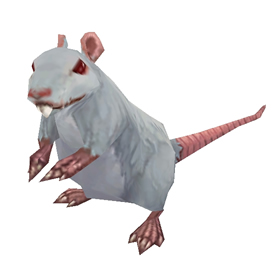 Whiskers the Rat